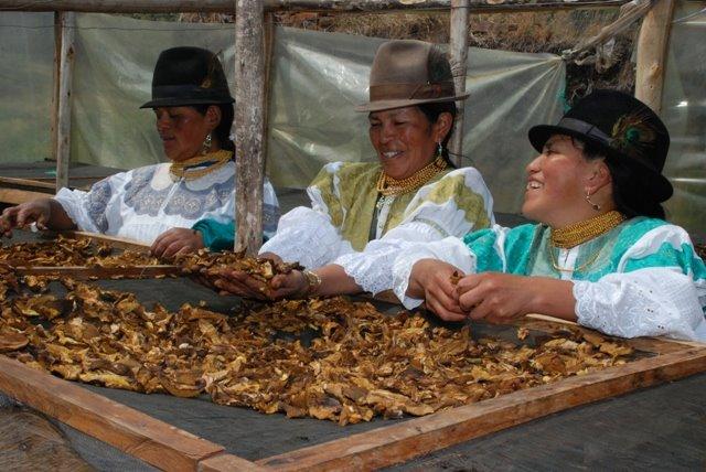 mujeres-indigenas-Ecuador