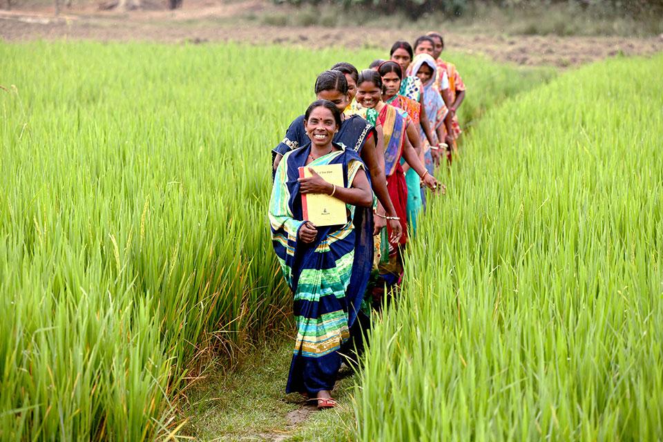 Mujeres-campesinas-India
